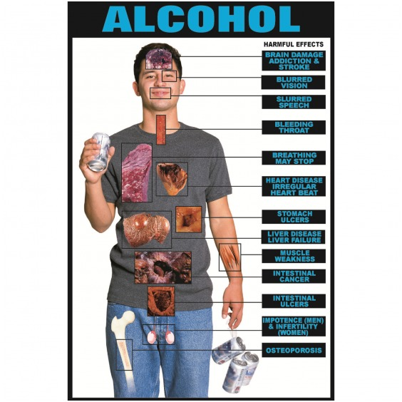Alcohol effect on body health involved many organs in the body